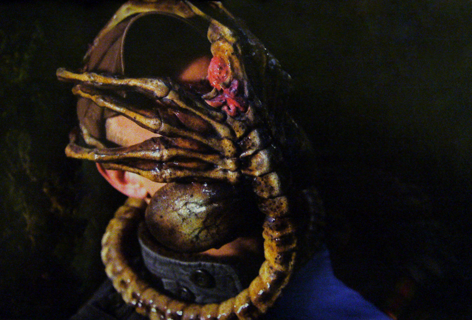 alien vs predator facehugger - photo #25