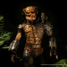 Billiken 1/6 Scale Predator built and painted by Vindicator and photographed by Dan Richard - Pic 1
