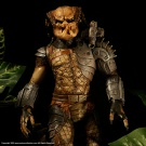 Billiken 1/6 Scale Predator built and painted by Vindicator and photographed by Dan Richard - Pic 2