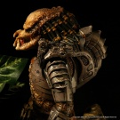 Billiken 1/6 Scale Predator built and painted by Vindicator and photographed by Dan Richard - Pic 6