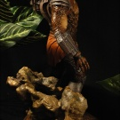 Billiken 1/6 Scale Predator built and painted by Vindicator and photographed by Dan Richard - Pic 12