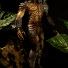 Billiken 1/6 Scale Predator built and painted by Vindicator and photographed by Dan Richard - Pic 13
